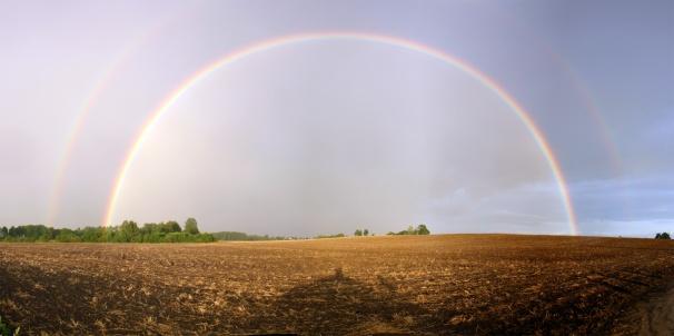 rainbow-1552630
